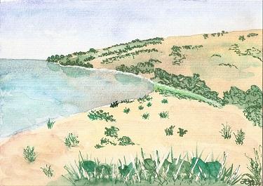 Strandlandschaft1
